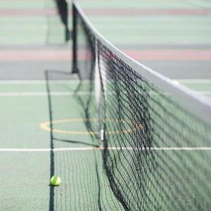 Tennis net and ball