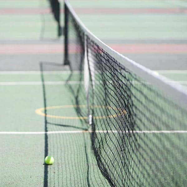 Tennis net and ball