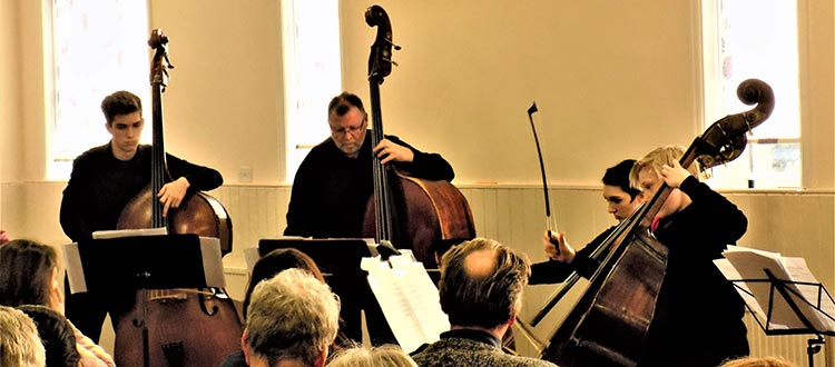Double Bass Term News