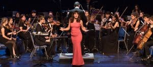 Glastonbury Festival Concerto Performance